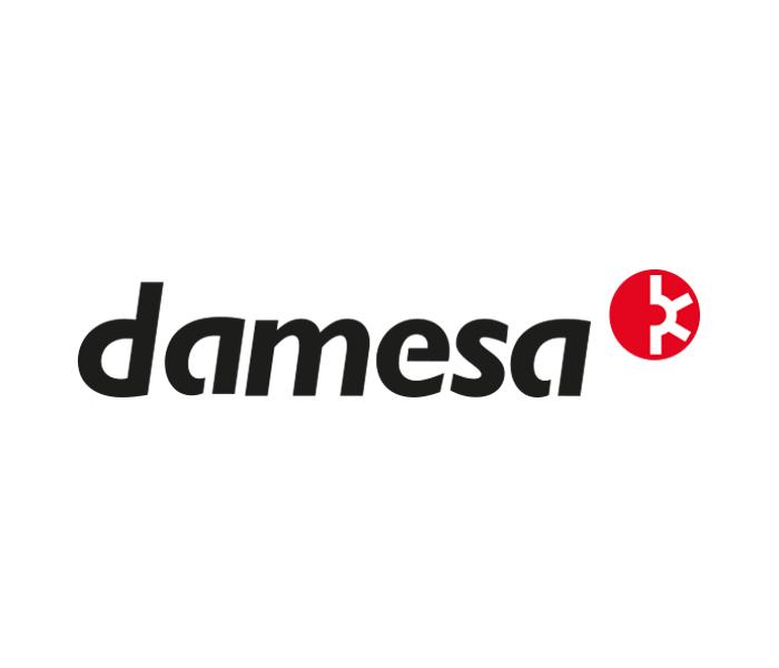 DAMESA - intus